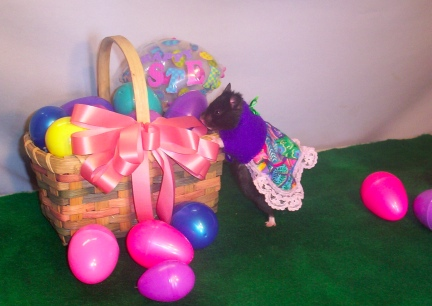 Easter Baskets for Coal