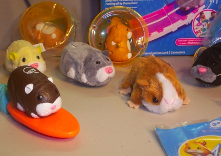 Close up of part of the collection of Hamster Toys