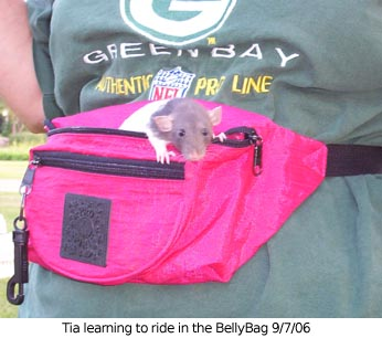 Tia in BellyBag.jpg